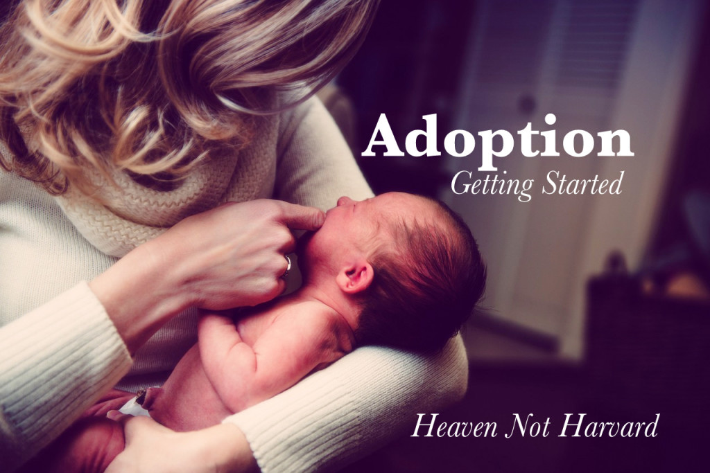 Adoption Getting Started