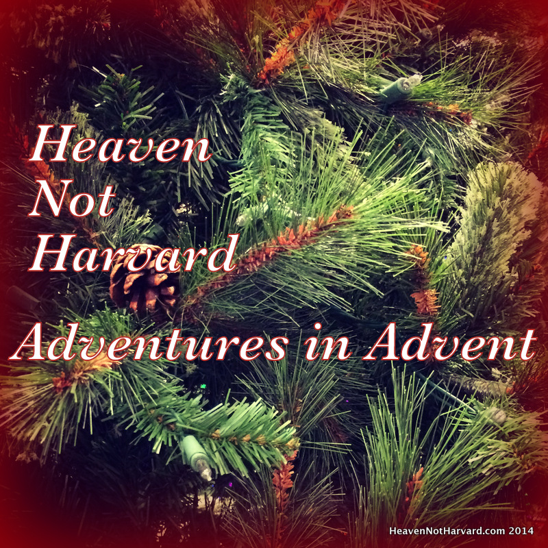 Celebrating every day of the advent season - Adventures in Advent Heaven Not Harvard