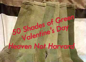 50 Shades of Green Valentine's Day - Heaven Not Harvard