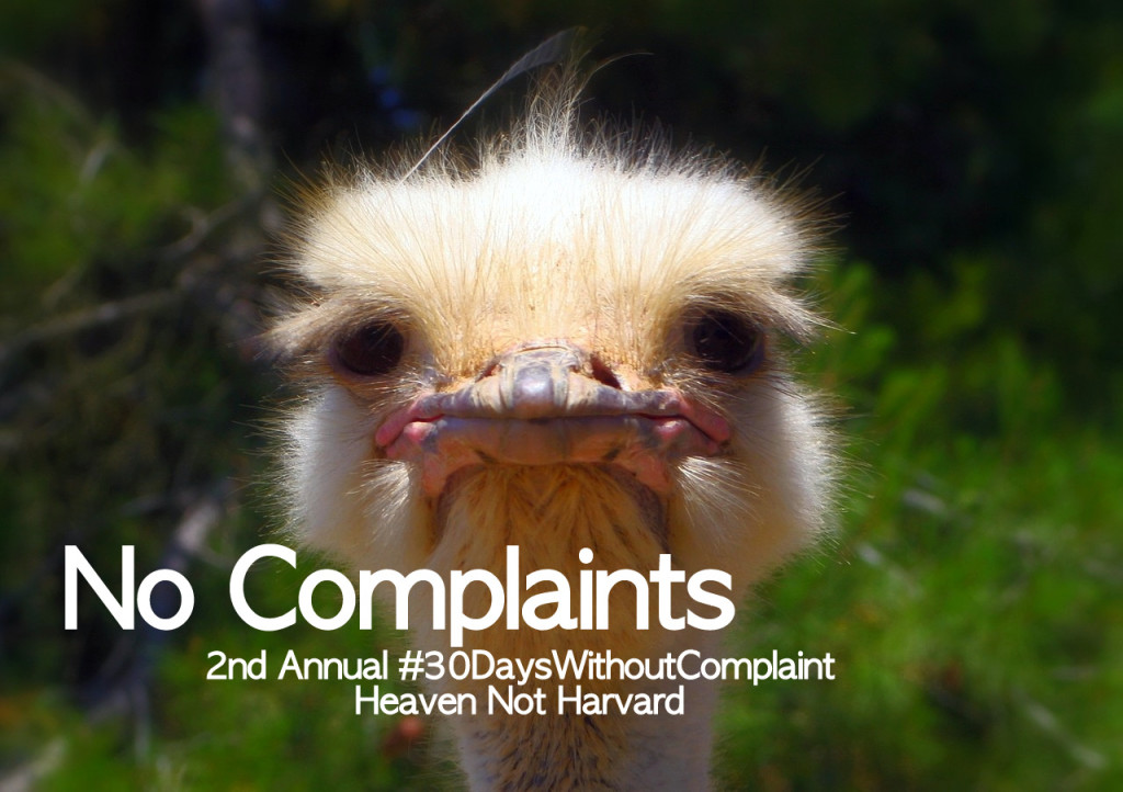 Want to be truly thankful this year? Try going 30 Days with No Complaints. Take this challenge - change your heart, home and perspective. #NoComplaints