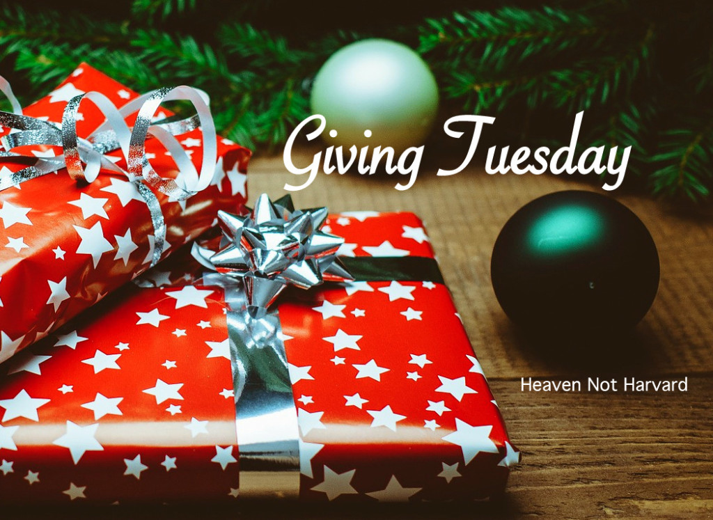 """I found my heart for Giving Tuesday through these words, """"Christ has no body but yours, No hands, no feet on earth but yours."""" - Teresa of Avila"""